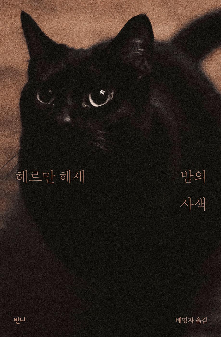 밤의 사색